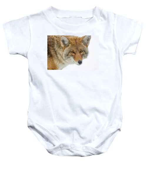 Mr. Coyote Baby Onesie
