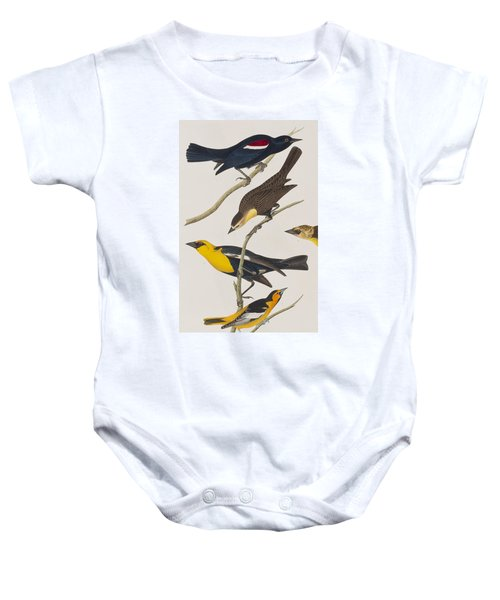 Nuttall's Starling Yellow-headed Troopial Bullock's Oriole Baby Onesie by John James Audubon