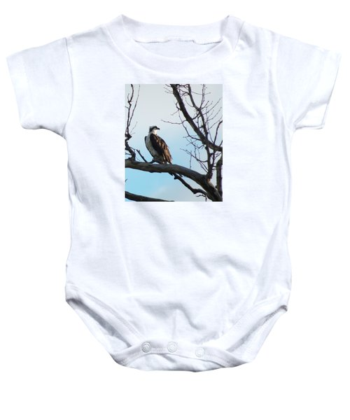 Osprey In Tree Baby Onesie