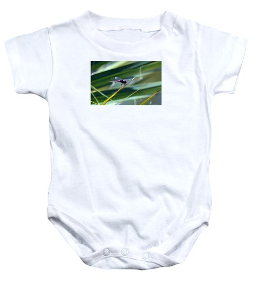 Patterns In Nature Baby Onesie