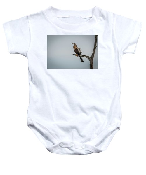 Perched Anhinga Baby Onesie