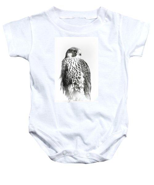 f71e5b60 Falco Peregrinus Baby Onesies | Pixels