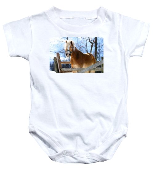 Portrait Of A Haflinger - Niko In Winter Baby Onesie