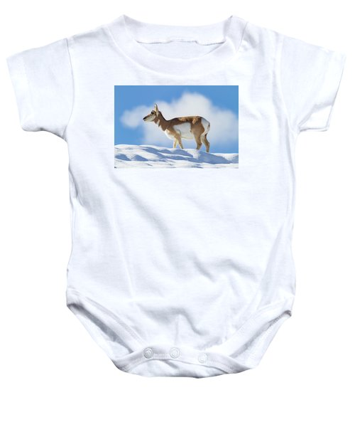 Pronghorn Doe On Snowy Ridge Baby Onesie