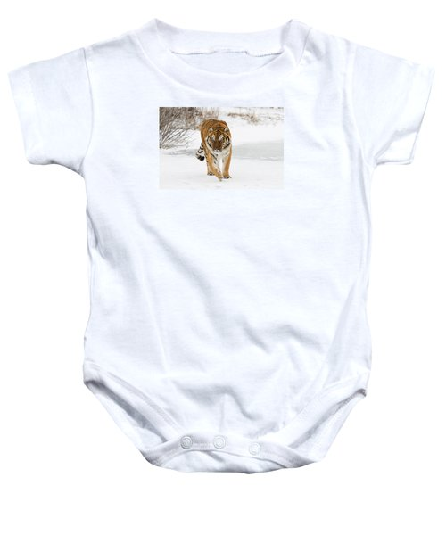 Prowling Tiger Baby Onesie