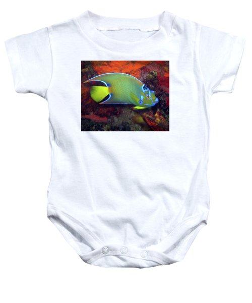 Queen Angelfish, U. S. Virgin Islands 2 Baby Onesie