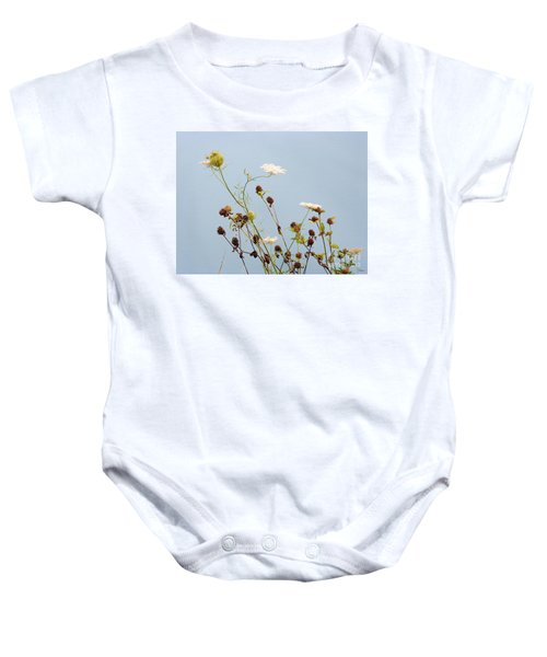 Queen Anne's Lace And Dried Clovers Baby Onesie