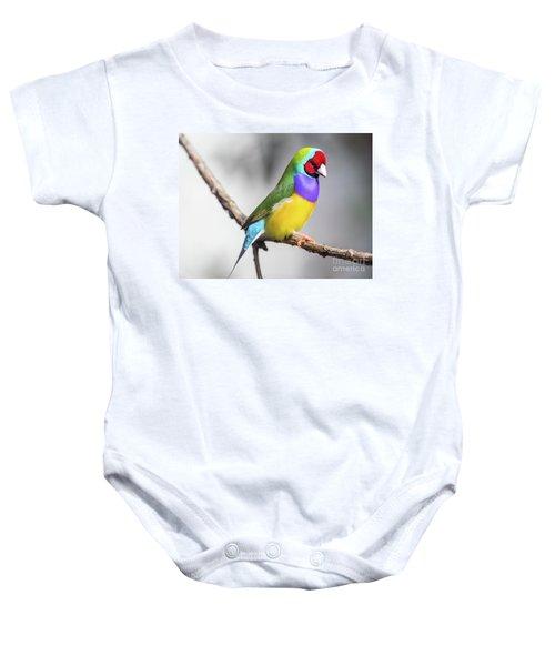 Rainbow Finch Baby Onesie