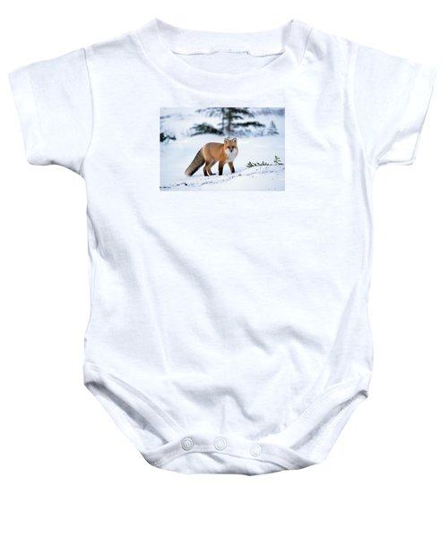 Red Fox Vulpes Vulpes Portrait Baby Onesie