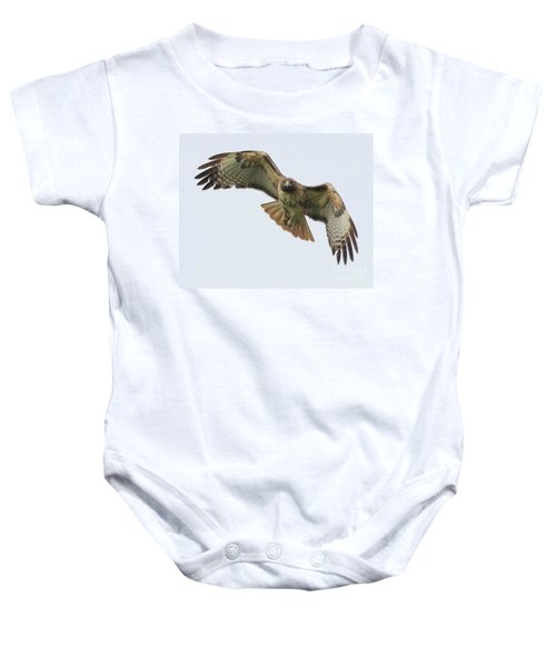 Red Tailed Hawk Finds Its Prey Baby Onesie