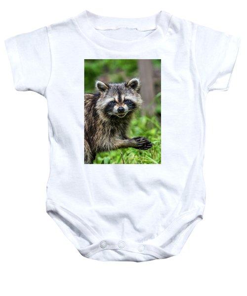 Smiling Raccoon Baby Onesie by Paul Freidlund