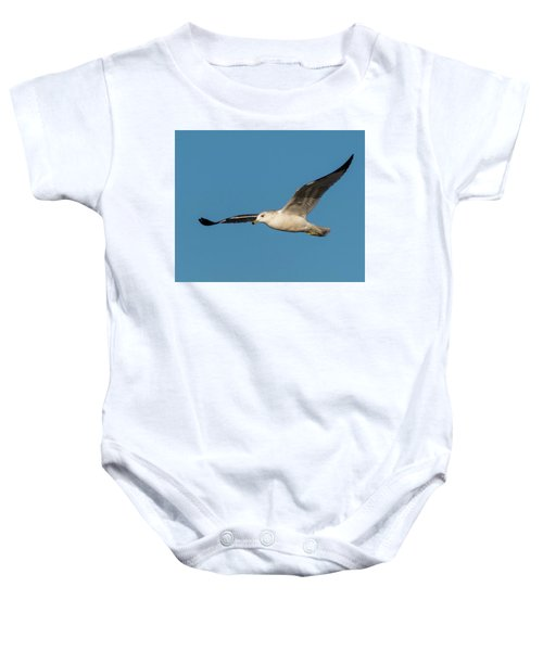Soaring Gull Baby Onesie