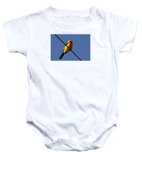 Spot Breasted Oriole Baby Onesie