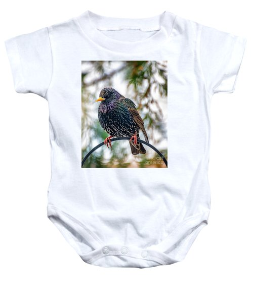 The Starling Baby Onesie