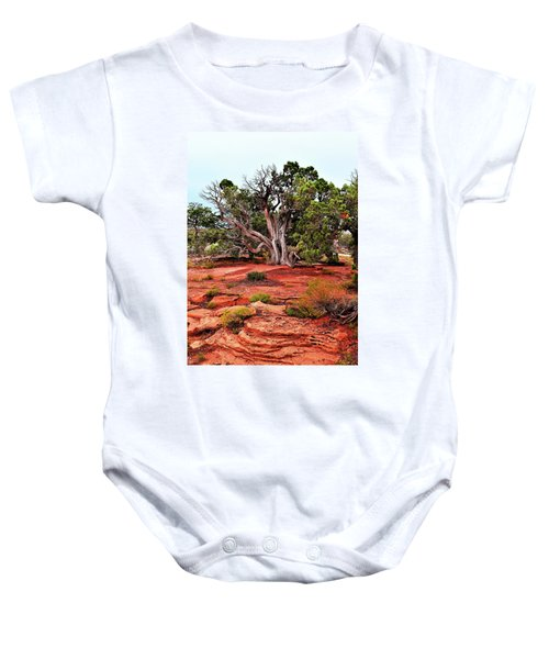 The Tree That Knows All Baby Onesie
