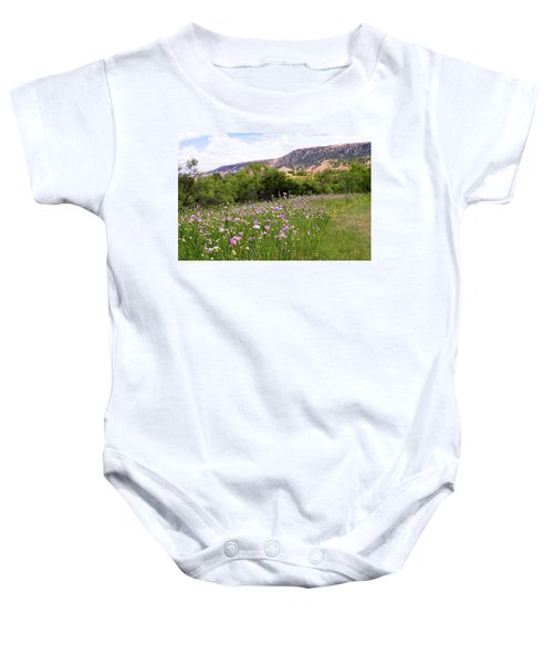 Thistles In The Canyon Baby Onesie