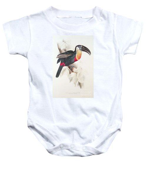 Toucan Baby Onesie by Edward Lear