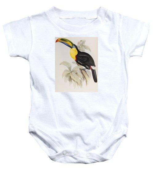 Toucan Baby Onesie by John Gould
