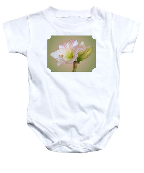 Unfurling Beauty - White Amaryllis With Red Trim Baby Onesie