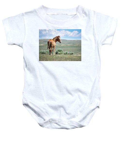 Wild Mustang Colt Of Sand Wash Basin Baby Onesie