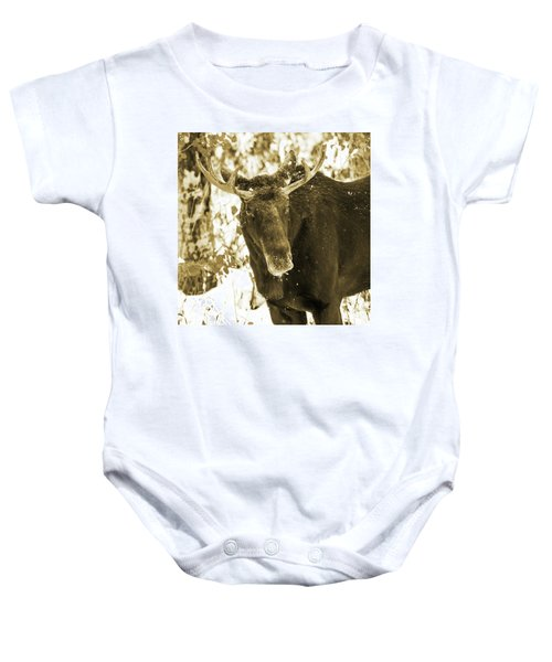Winter Moose - Sepia Baby Onesie
