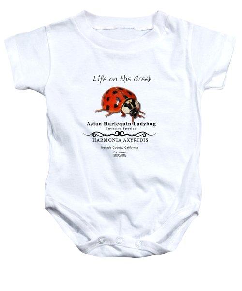 Asian Harlequin Ladybug Baby Onesie