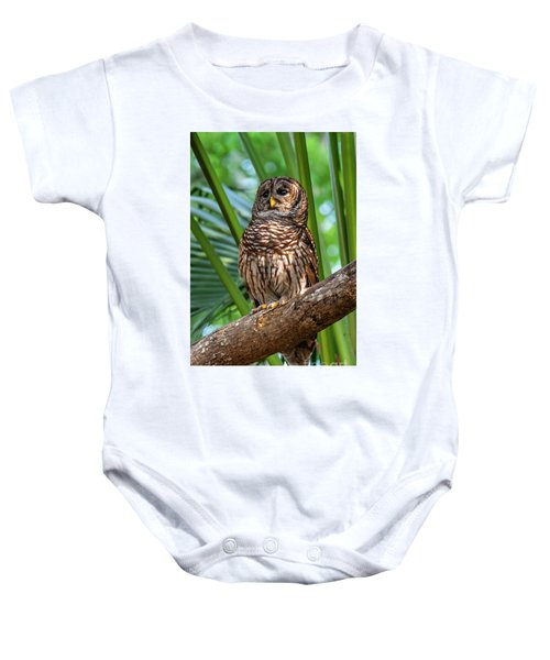 Barred Owl On Perch Baby Onesie