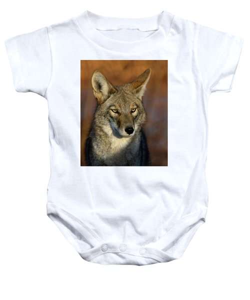 Coyote 1 Baby Onesie