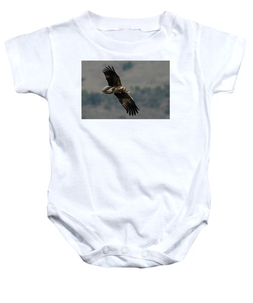 Egyptian Vulture, Sub-adult Baby Onesie