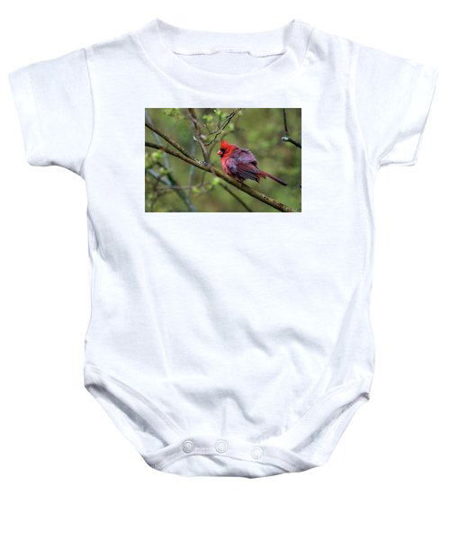 Fluffing Up My Feathers Baby Onesie