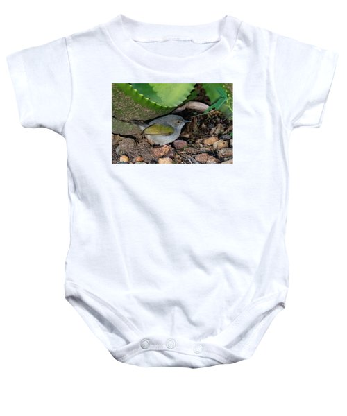 Gray-backed Camaroptera Baby Onesie