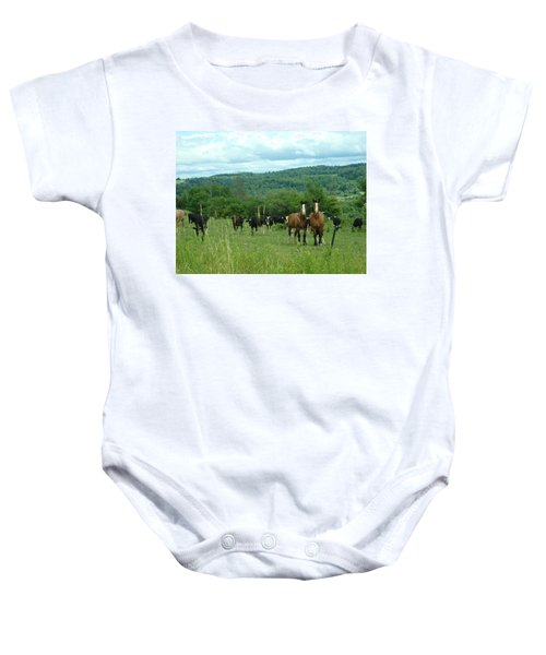 Horse And Cow Baby Onesie