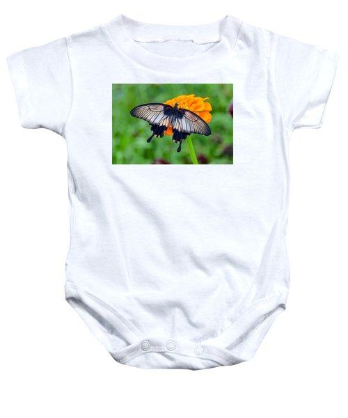 Kite Swallowtail  Baby Onesie