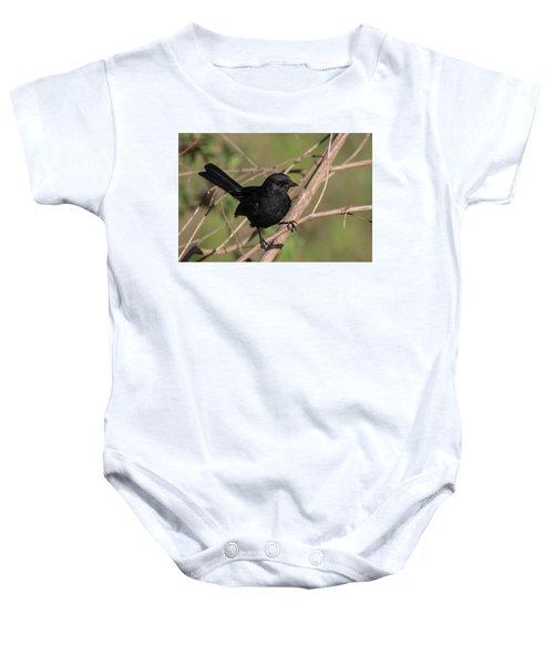 Northern Black Flycatcher Baby Onesie