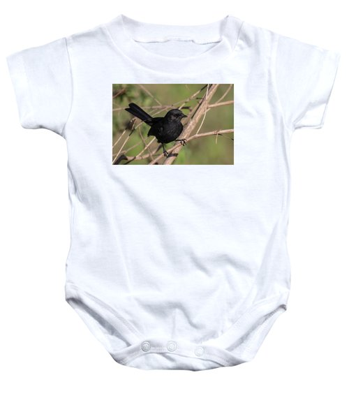 Northern Black Flycatcher Baby Onesie