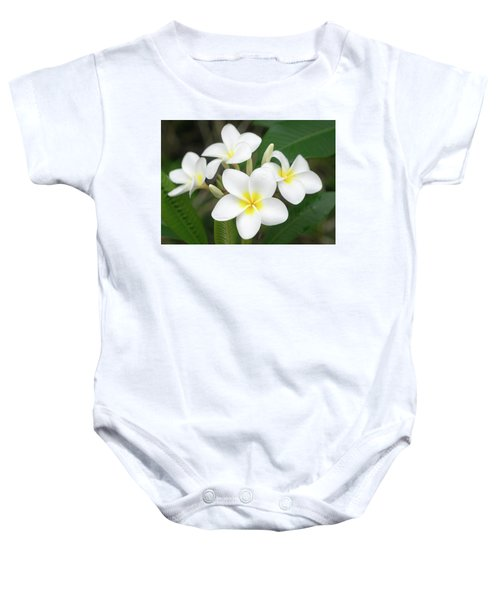Pleasing Plumeria Baby Onesie
