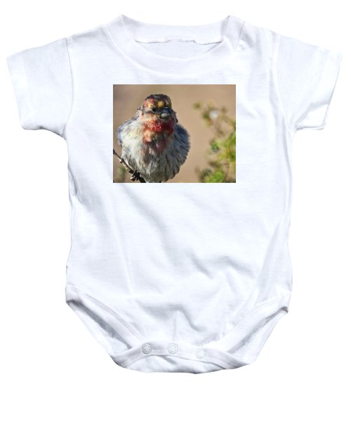 Rare Multicolored Male House Finch Baby Onesie