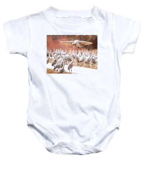 Ready Or Not, Here I Come -- Sandhill Cranes Baby Onesie