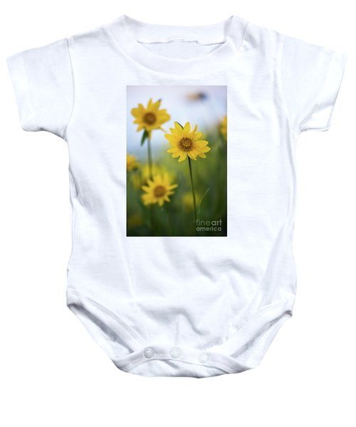 Baby Onesie featuring the photograph Sunflower  by Vincent Bonafede