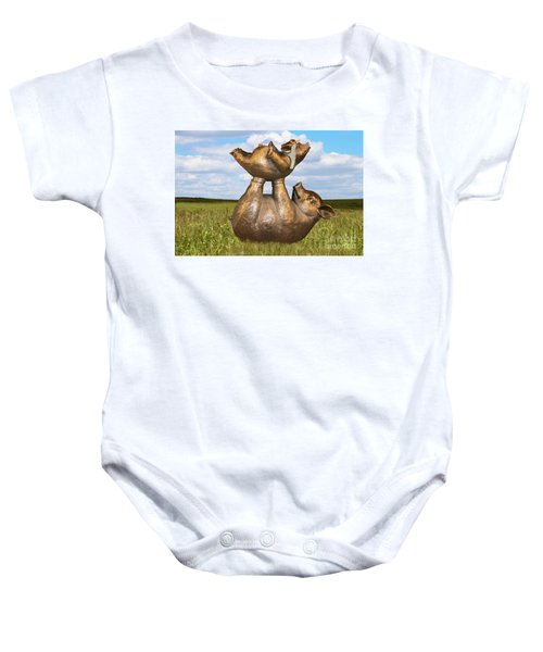 Teaching A Pig To Fly - Mother Pig In Grassy Field Holds Up Baby Pig With Flying Helmet To Teach It  Baby Onesie