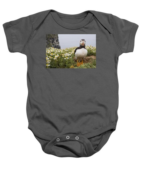 Atlantic Puffin In Breeding Plumage Baby Onesie