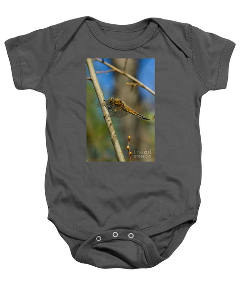 Four-spotted Chaser Baby Onesie