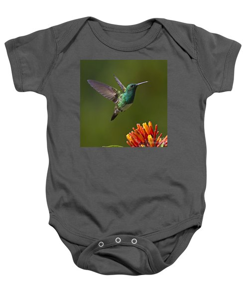 Baby Onesie featuring the photograph Snowy-bellied Hummingbird by Heiko Koehrer-Wagner