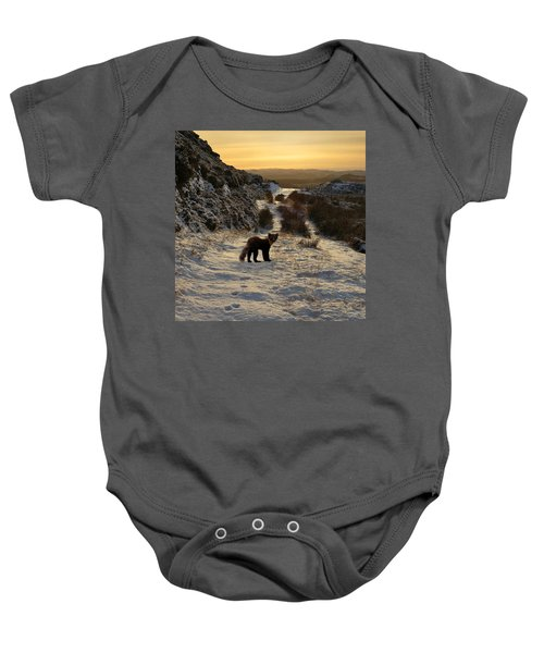 The Pine Marten's Path Baby Onesie