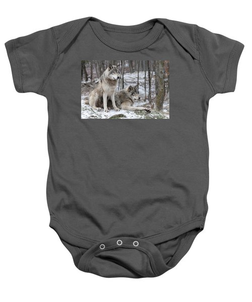 Timber Wolf Pair In Forest Baby Onesie