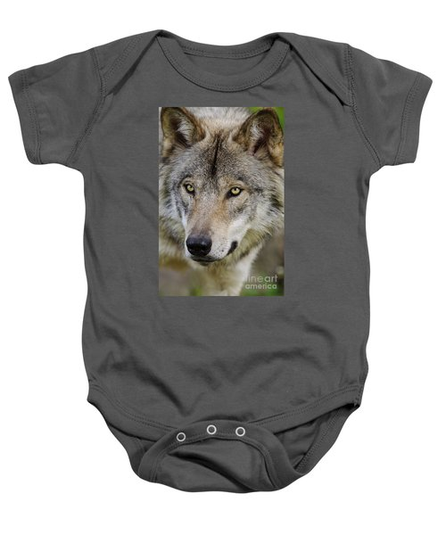 Timber Wolf Portrait Baby Onesie
