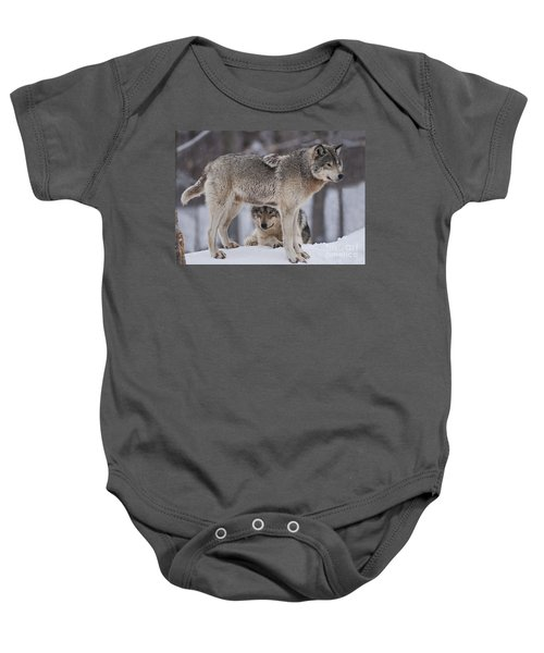Timber Wolves  Baby Onesie