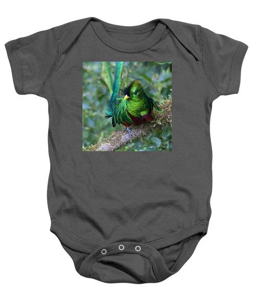 Baby Onesie featuring the photograph Quetzal by Heiko Koehrer-Wagner