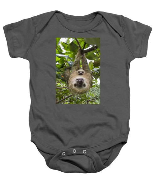 Hoffmanns Two-toed Sloth And Old Baby Baby Onesie