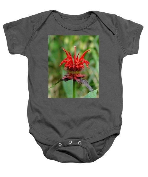 A Flowering Red Castle Beauty Baby Onesie
